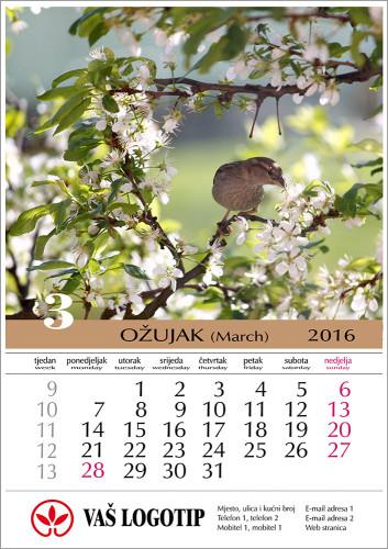 Kalendar-Moj-12-lisni-03-2016