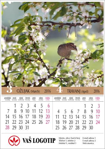 Kalendar-Moj-6-lisni-2016-02